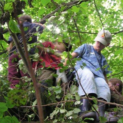 Wald-Expedition für Familien am 25. April 2021