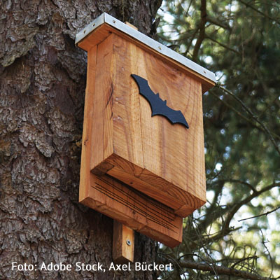 Wir bauen einen Fledermauskasten am 11. Juni 2021